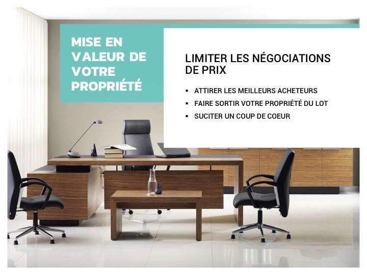 Template-book-service-vendeur-collection-nemo-3