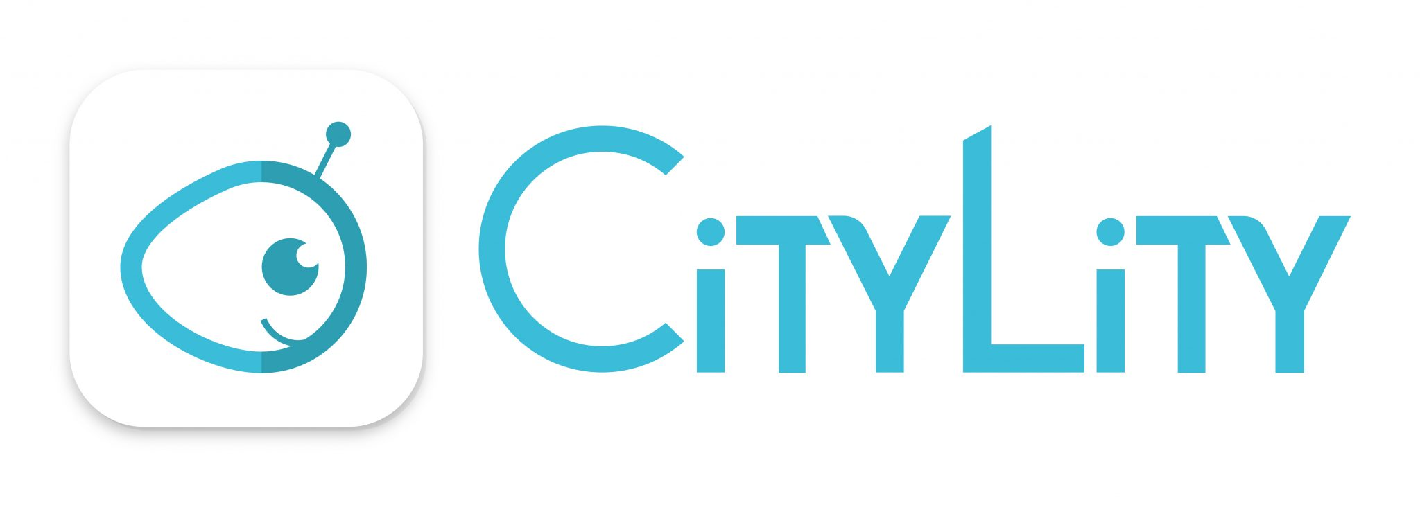 Logo CityZendesk – Ex Citylity