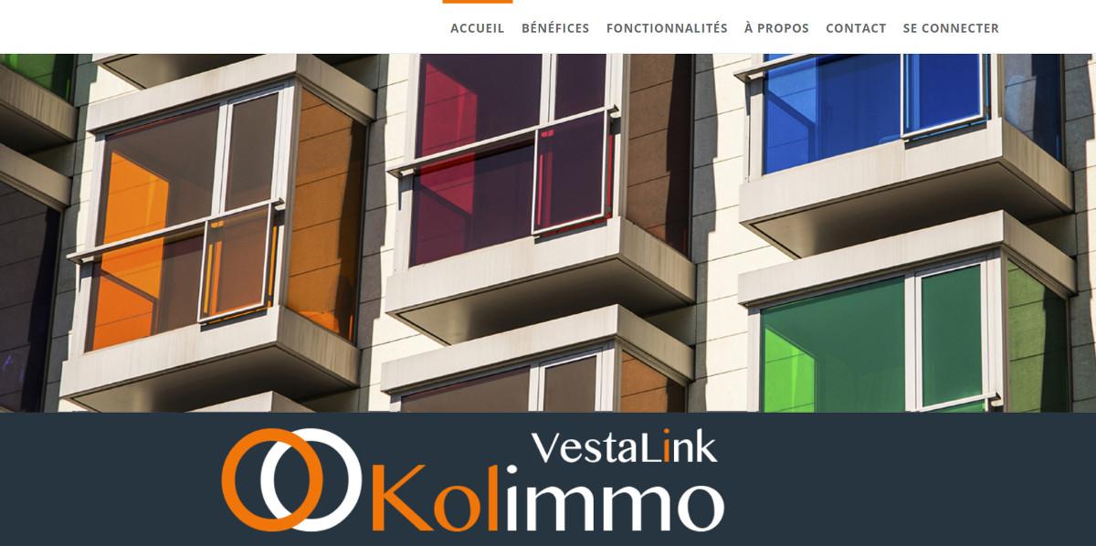Kolimmo Gestion Immobilier Incidents Illustration