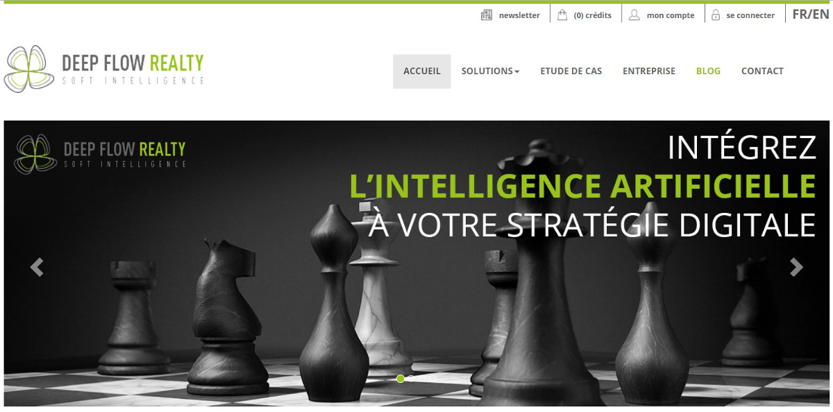 Deepflowrealty Annonces Immobilier Redaction