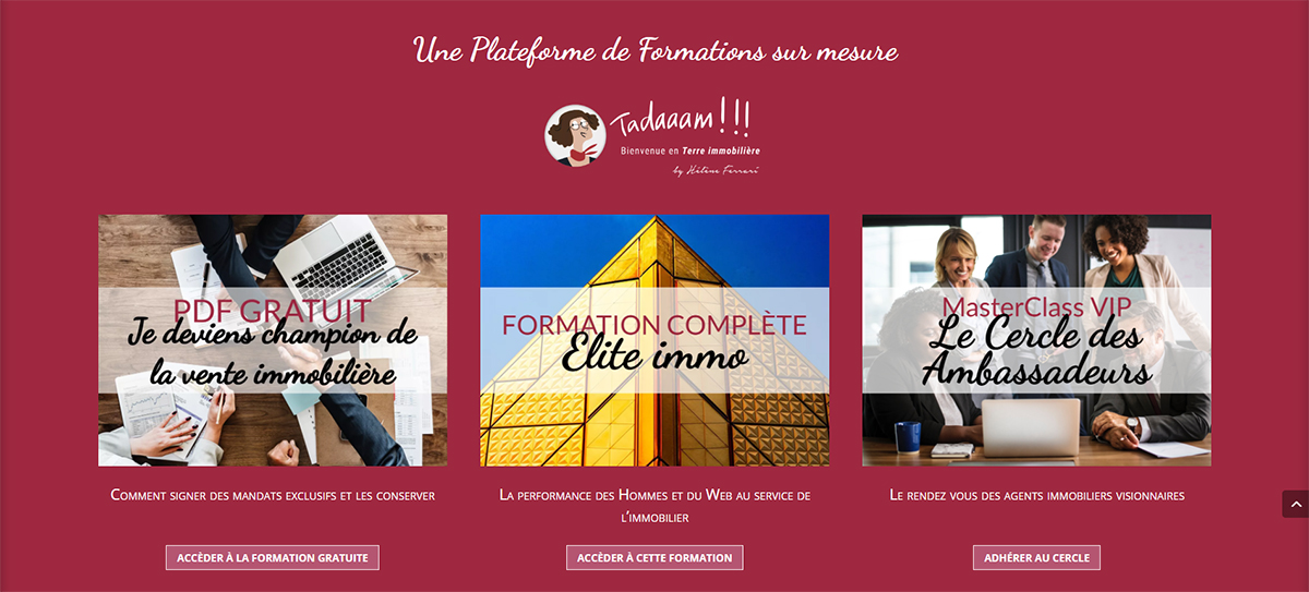 Helene Ferrari Formation Immobilier Illustration Performance Commerciale