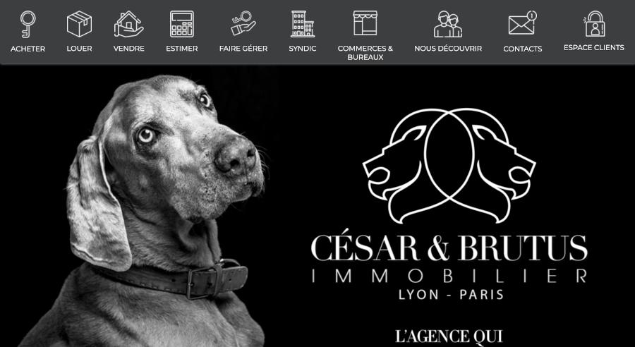 Cesar Et Brutus Homepage Branding Immobilier